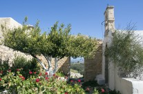 Springtime in Crete