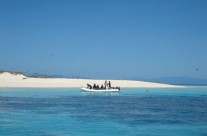 Michaelmas Cay on the Great Barrier Reef, Australia