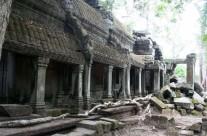 Ta Phrom, Cambodia – View 1