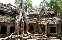 Ta Phrom, Cambodia – View 3
