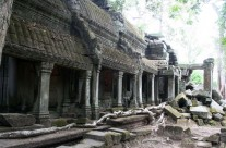 Tap Phrom Temple, Cambodia – View 1